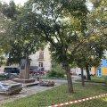 У центрі Житомира знищують зелений сквер. ФОТО