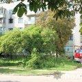 Житомирська поліція встановлює обставини подвійного вбивства на вулиці Степана Бандери. ФОТО