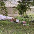 Вбивця матері та доньки на Степана Бандери не був членом Національного корпусу