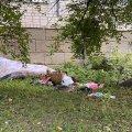 Перед вбивством було згвалтування? Нова інформація про трагедію на Степана Бандери у Житомирі