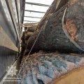 На Житомирщині виявили фуру з нелегальною деревиною. ФОТ