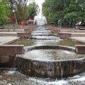 Якою буде погода у вихідні в Житомирі та області