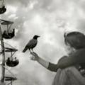 МУЗІКА. Francesca Belenis & Riccardo Cocciante ~ I'd Fly. ВІДЕО