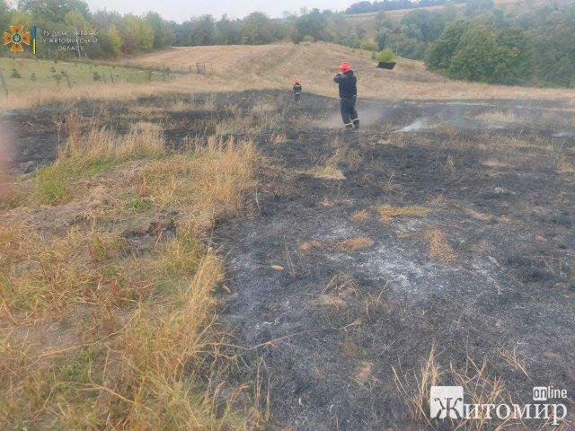 У селі на Житомирщині через лінії електропередач загорілась суха трава. ФОТО