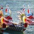 У Житомирі 18 вересня відбудуться змагання з веслування на човнах «Дракон»