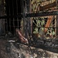 За добу на Житомирщині сталося два загоряння в оселях та одна пожежа на підприємстві. ФОТО