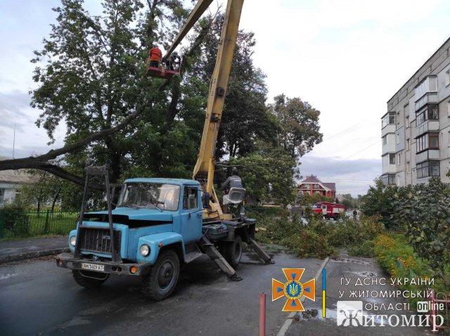 За добу рятувальники Житомирщини тричі надавали допомогу у розрізанні дерев, що в впали на проїжджу частину