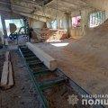 На Чуднівщині розслідують незаконні порубки лісу. ФОТО