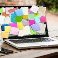 IT-освіта: як вибрати курси програмування