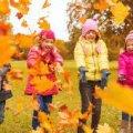 Коли в житомирських школах розпочнуться осінні канікули